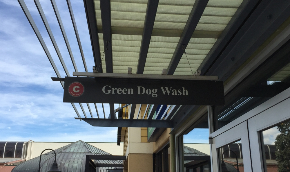 Green dog wash