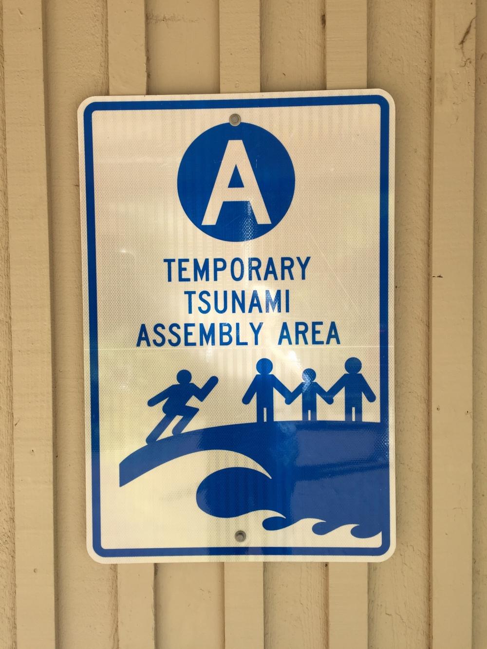 tsunami assembly