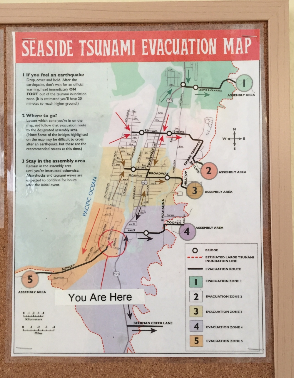 tsunami-evacuation-map.jpg